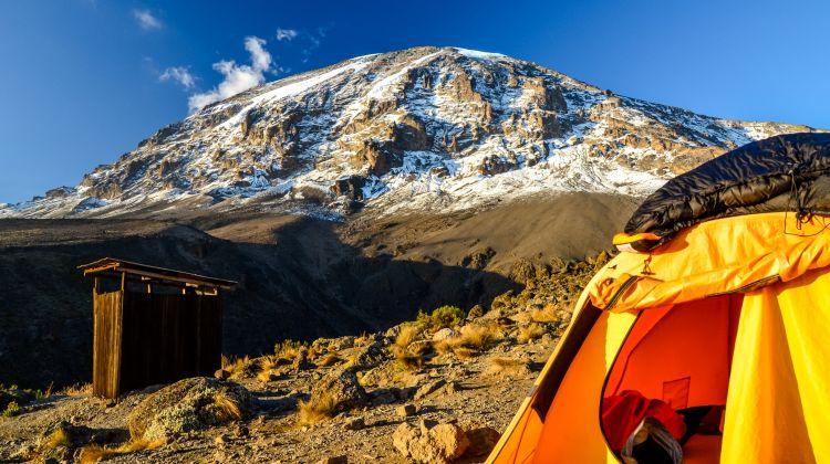 Eight-Day Mount Kilimanjaro Climb: Lemosho Route
