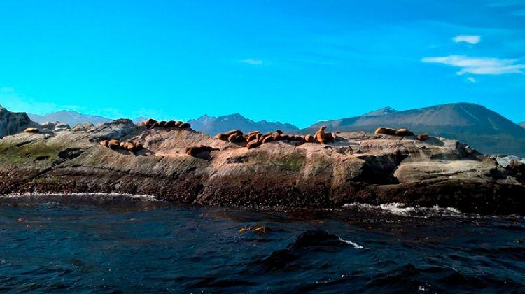 El Calafate & Ushuaia