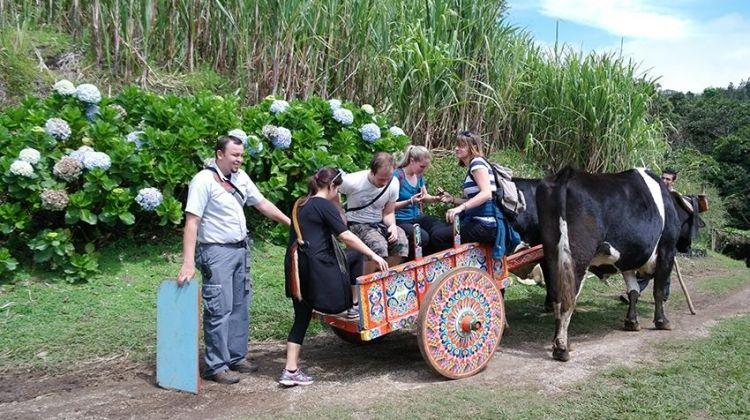 El Trapiche Sugar Mill Day Trip