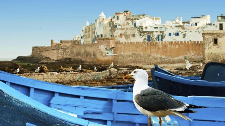 Essaouira Full Day Tour