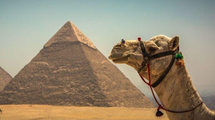 Essential Egypt