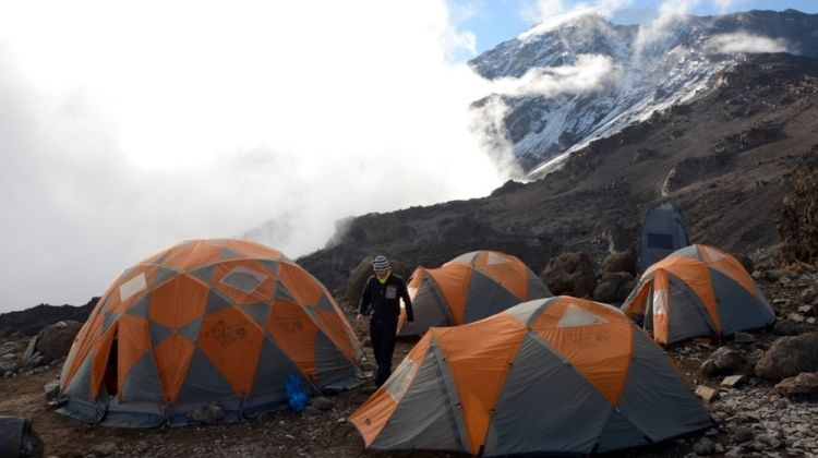 Ethical & Luxury Kilimanjaro Climb Lemosho Route 8 Days