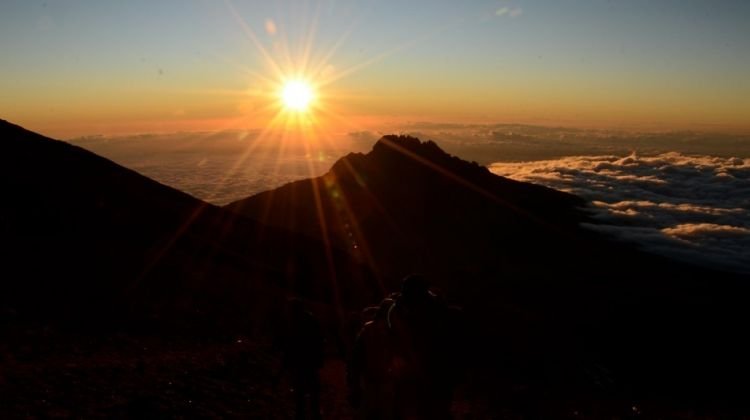 Ethical & Luxury Kilimanjaro Climb Lemosho Route 8 Days