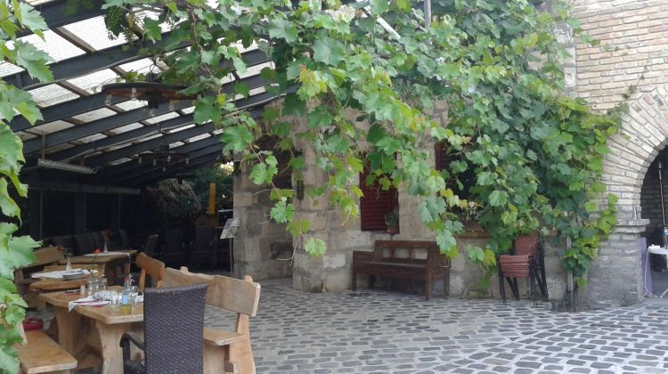 Etyek Wine Tour & Tasting With Dinner Near Budapest
