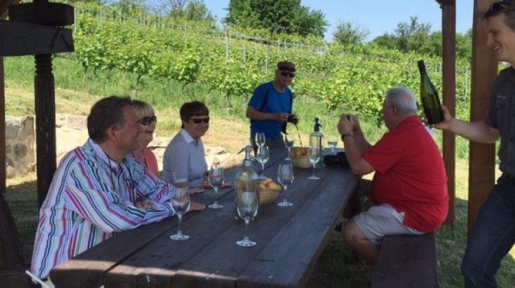 Etyek Wine Tour & Tasting With Dinner Near Budapest