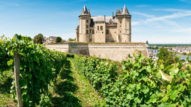 Exclusive Wine Day Tour in Loire Valley