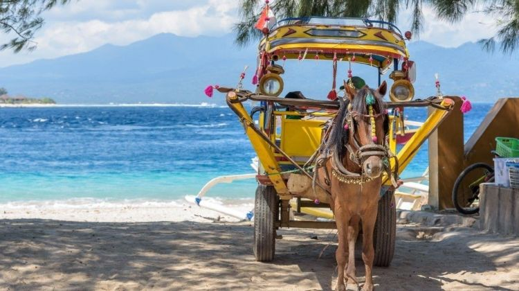 Exotic Gili Islands, Private Tour