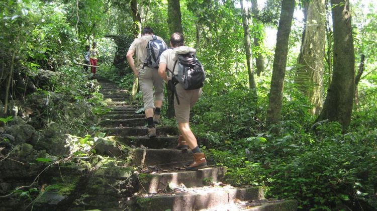Explore Cuc Phuong National Park full day