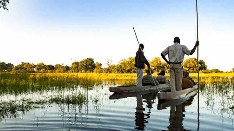 Falls, Botswana and Kruger - 12 days