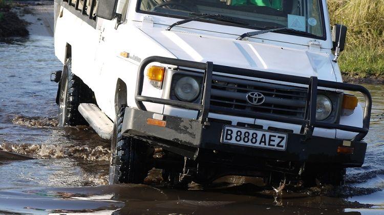 Family Botswana and Zambia Safari Adventure