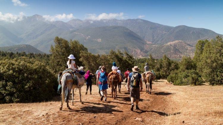 Family Marrakech, Atlas & Essaouira Adventure