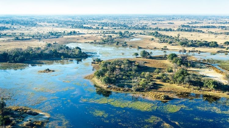 Family Okavango Adventure