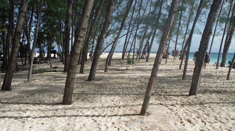 Family Thailand Active Jungle and Beach Adventure