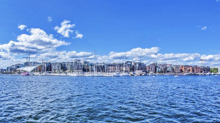 Fjord sightseeing