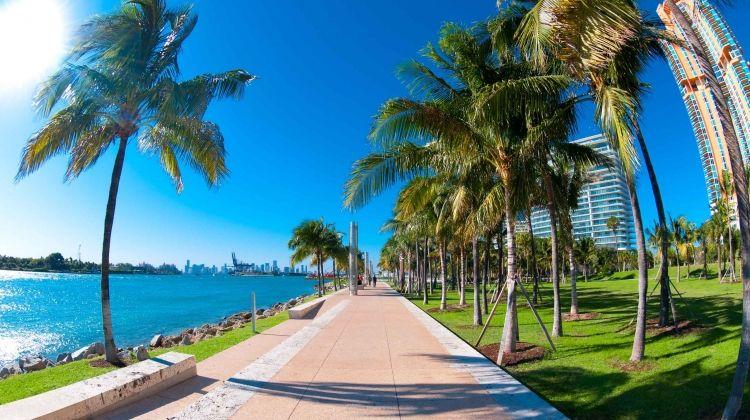 florida christmas new orleans new year - Florida Christmas