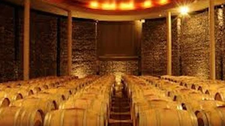 Food & Wine Tour of Argentina and Chile