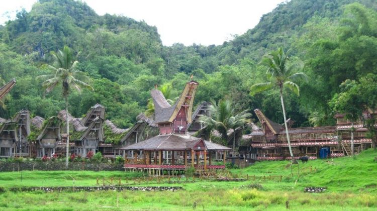 Four Day Tana Toraja Adventure