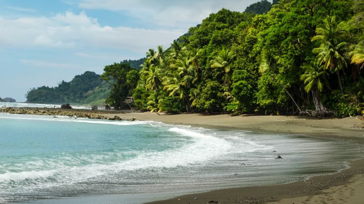 Four Days in Osa Peninsula: Corcovado National Park