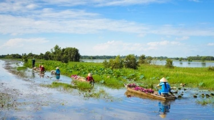 From The Mekong Delta To The Temples Of Angkor (formula Port/port Cruise)