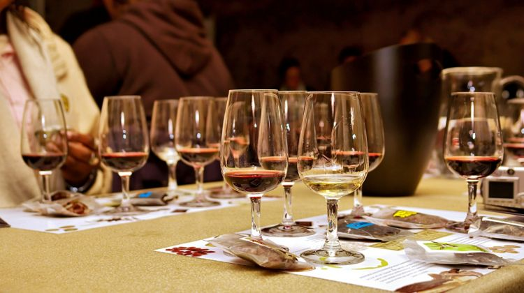 Full Day Cape Winelands Tour