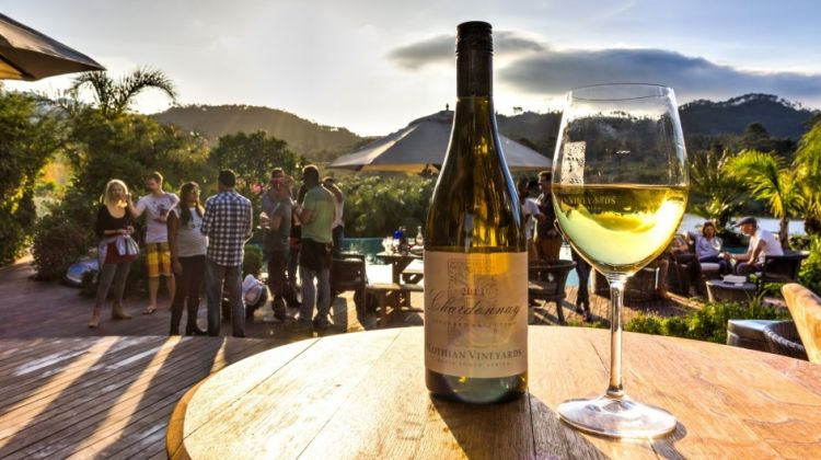Full Day Private Wine Tour from Franschhoek