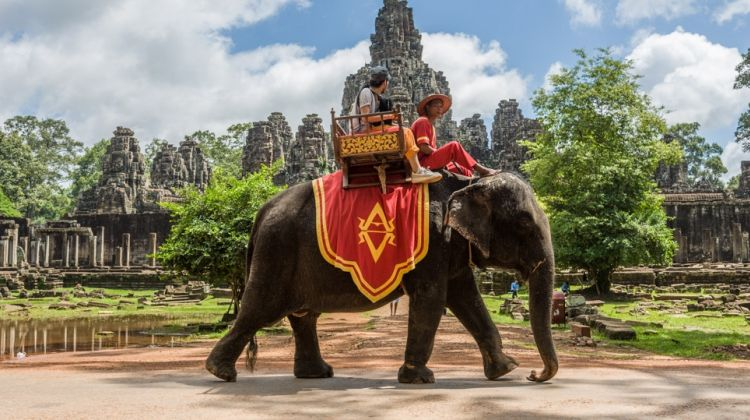 Full Day Tour Tuk Tuk and Elephant