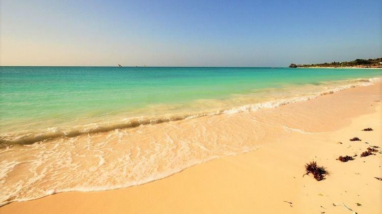 Game Parks, Zanzibar  Mozambique 39 Days