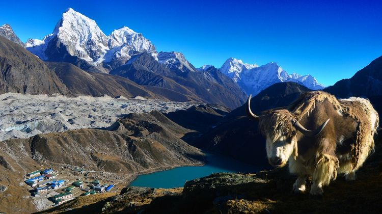 Gokyo Everest Base Camp Trek
