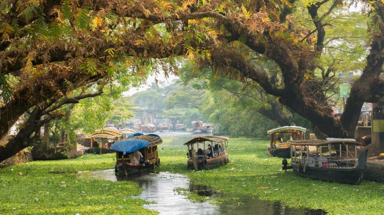 Golden Triangle, Rajasthan & Kerala: 21-Day Tour