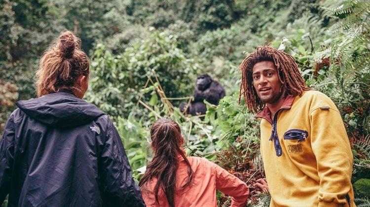 Gorillas & Game Parks
