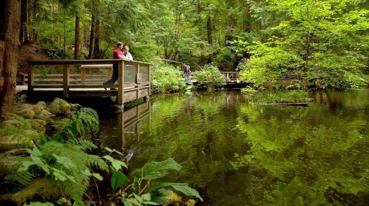 Grouse Mountain + Capilano Suspension Bridge Park Tour