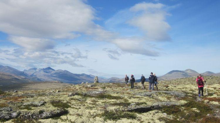Guided Walking in Venabu, Norway