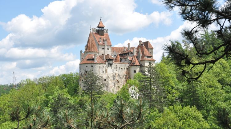 Halloween Party At Bran Castle By Transylvania Live Dracula Tours - Live-bran-castle-pictures