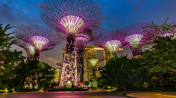 Hop on & off City Tour with SkyPark & Gardens by the bay