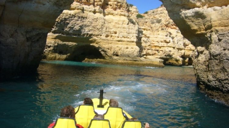 Insonia - Dolphin watching and Cave tour