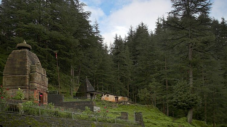 Jageshwar Yoga and Meditation Tour