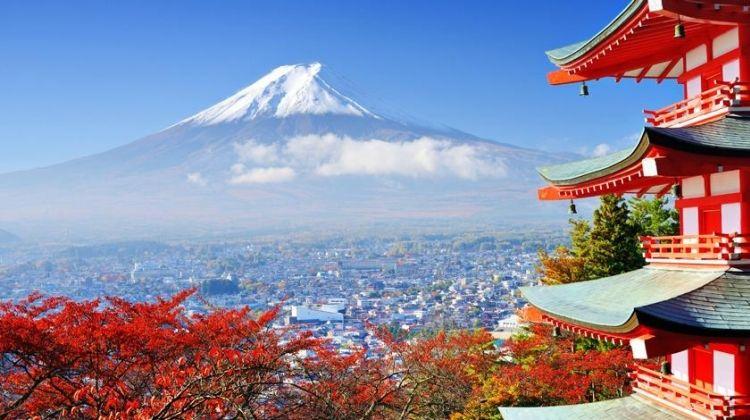 Japan Adventure