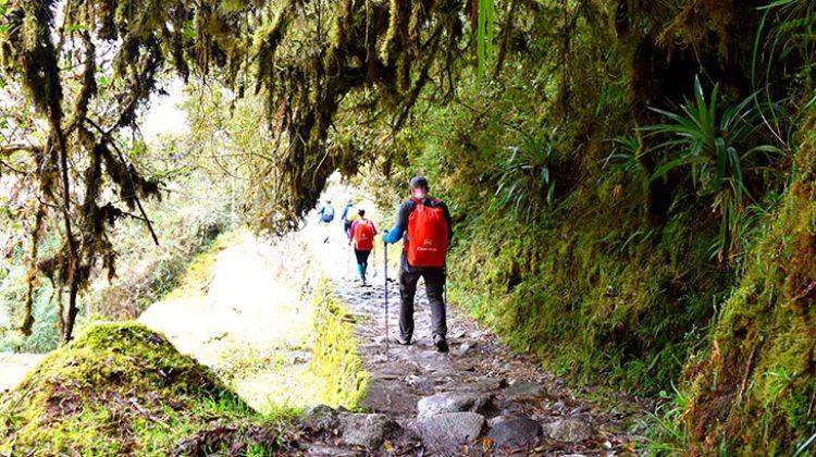 Journey to Machu Picchu through the Inca Trail