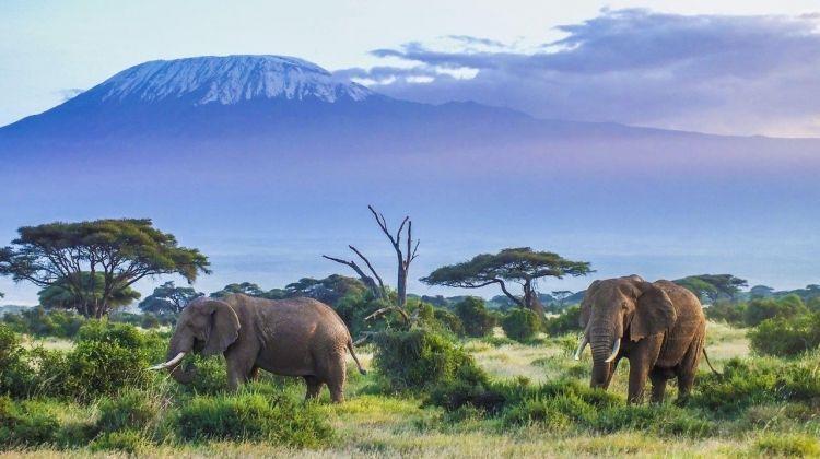 Kenya Classic, Sopa Lodges