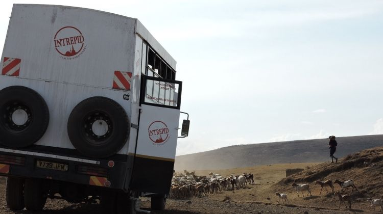 Kenya to Cape Town