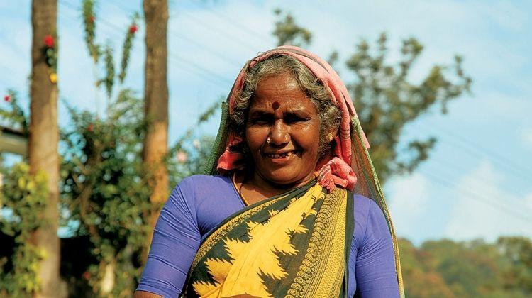 Kerala Backwaters + Kovalam Extension