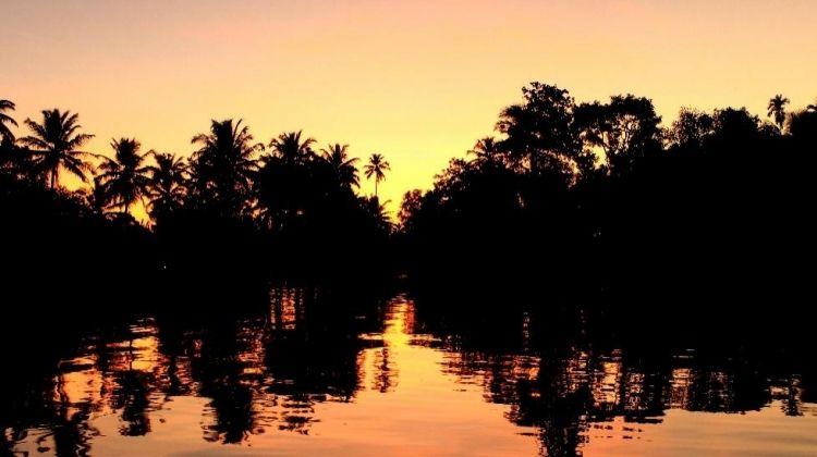 Kerala Tour: Backwaters + Ayurveda Treatments