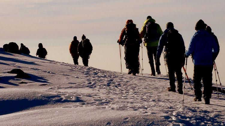 Kilimanjaro Climb-Lemosho Route 8 Days Itinerary
