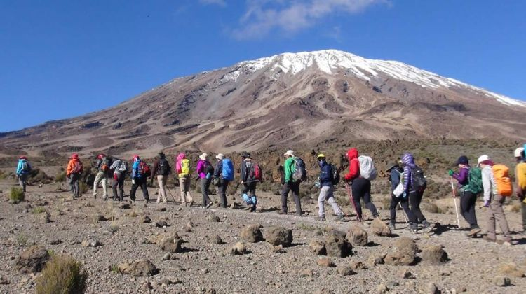 Kilimanjaro Climb-  Machame Route