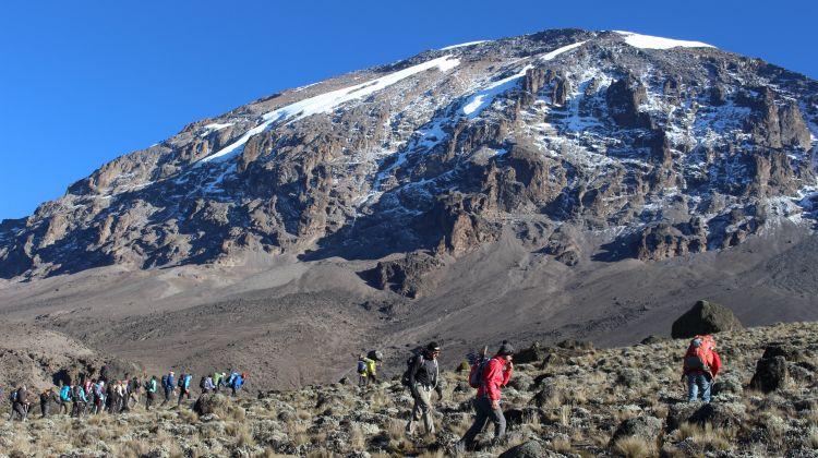 Kilimanjaro Climb: Northern Circuit Route