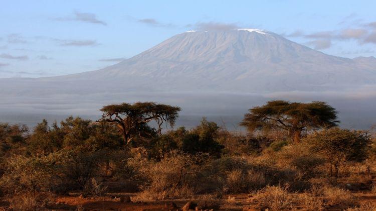 Kilimanjaro Climb Rongai Route