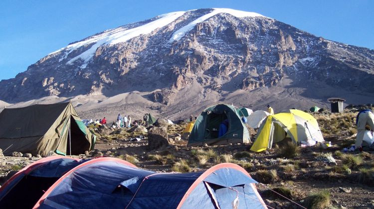 Kilimanjaro Lemosho Route & Arusha National Park Tour