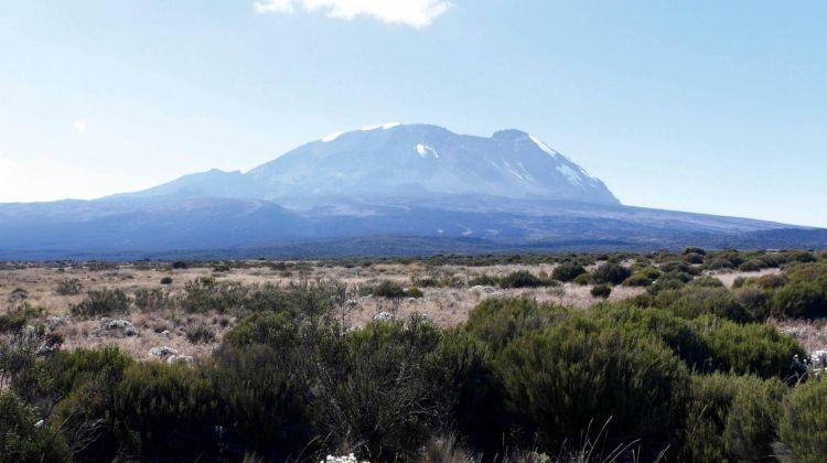 Kilimanjaro - Shira Route