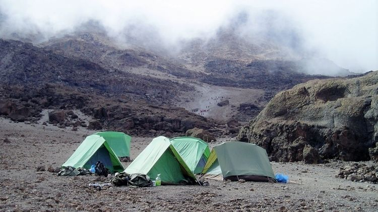 Kilimanjaro Trek- Umbwe Route - Moshi Start 8 Days