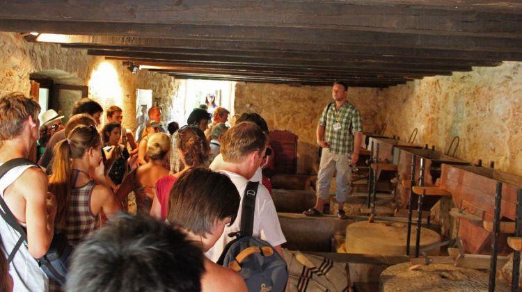 Krka Waterfalls and Sibenik Tour from Split and Trogir